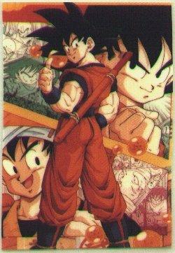 Goku with back turned.jpg