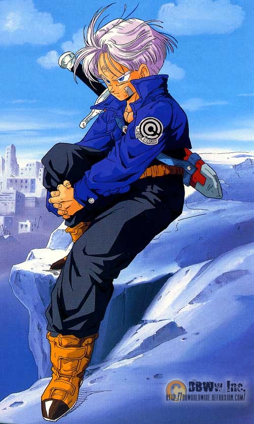 Trunks Sitting On a Rock.jpg